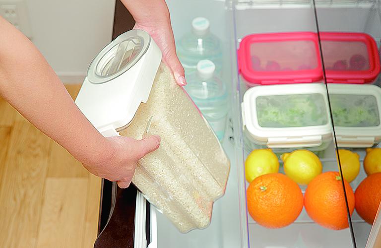 冷蔵庫に収まるコンパクトサイズイメージ